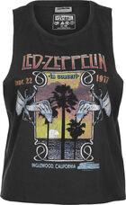 NMMax Led Zeppelin