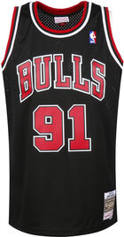 NBA 2.0 Chicago Bulls - Dennis Rodman #91