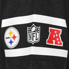 NFL Team Established Pittsburgh Steelers