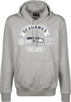 NFL Graphic Seattle Seahawks