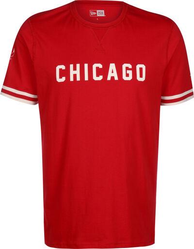 NBA Wordmark Chicago Bulls