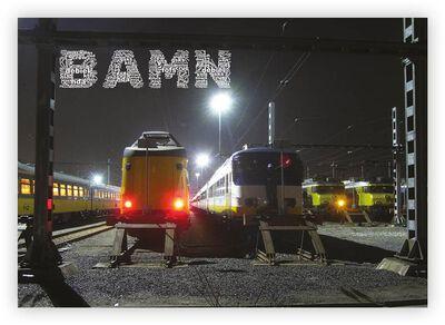 BAMN #3