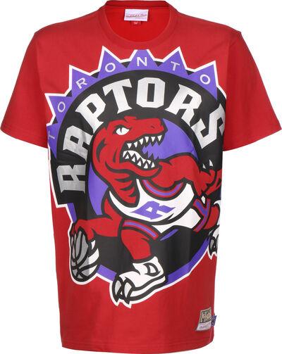 Big Face Raptors