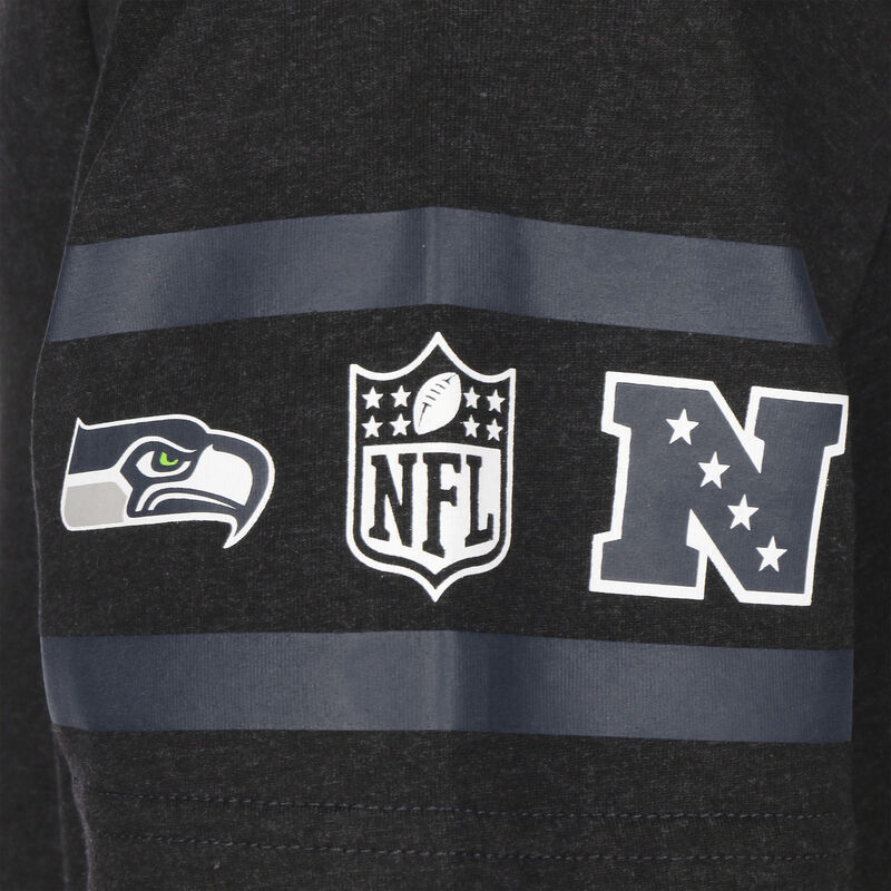 NFL Team Established Seattle Seahawks
