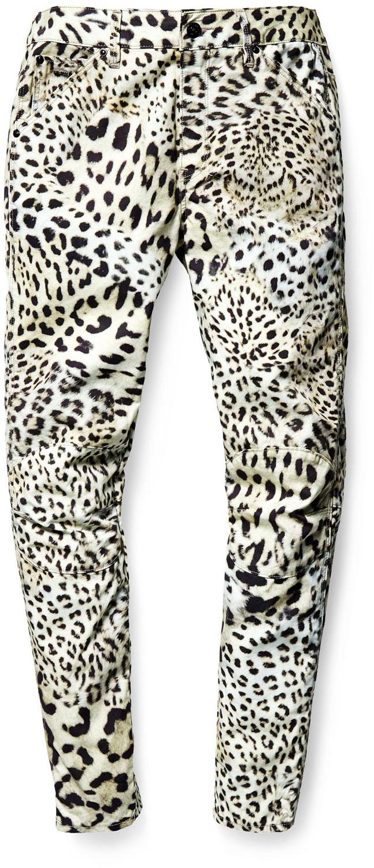 Elwood X25 leopard W
